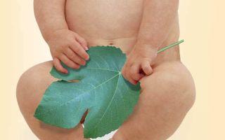 Проблемы и правильный уход за половыми органами грудничков