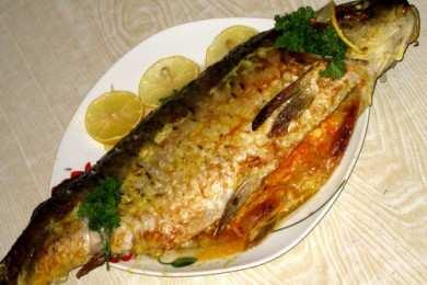 Какую рыбу можно при грудном вскармливании: селедка, копченая, соленая - Все о грудничках от А до Я