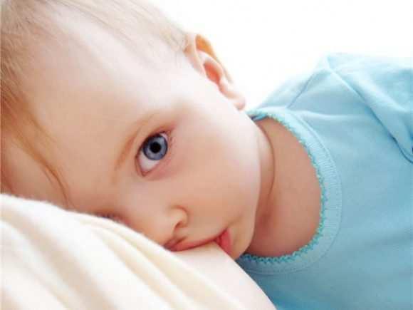 Польза материнского молока