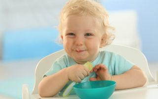 Рекомендации ВОЗ и схема по введению прикорма для грудничков, таблица на 90 дней