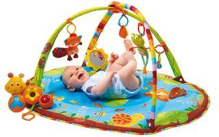 Как правильно выбрать развивающий коврик для малыша, обзор лучших моделей