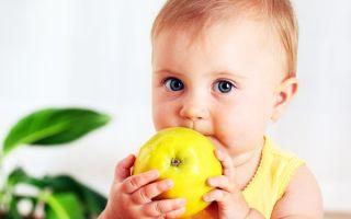 Со скольки месяцев можно давать свежее яблоко ребенку и как приготовить прикорм