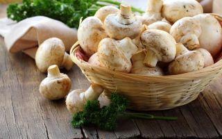 Можно ли есть чеснок, грибы (шампиньоны) и картошку при грудном вскармливании