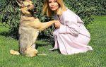 Ольга Орлова сильно волнуется из-за операции питомца