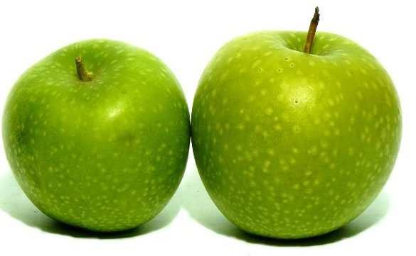 Зеленые сорта яблок