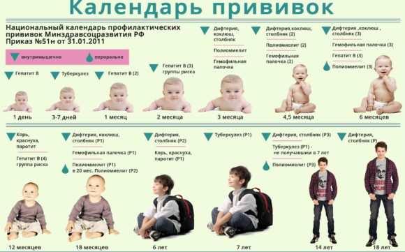 установленный график прививок