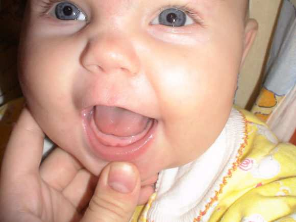 первые зубы 1
