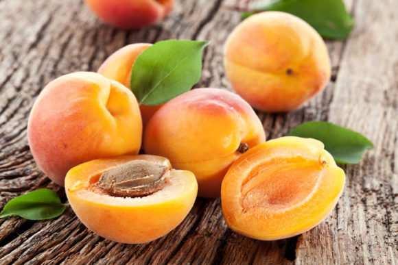 abrikosyi