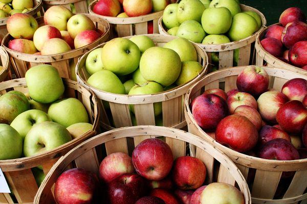 разные сорта яблок в корзинах