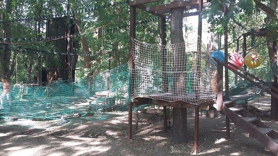 Веревочный парк