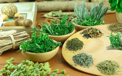 травы для лактации