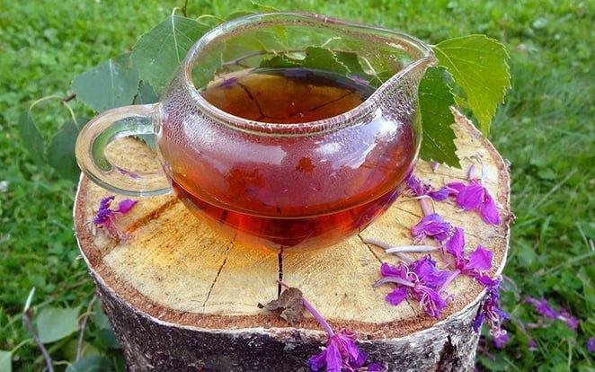 иван чай при гв