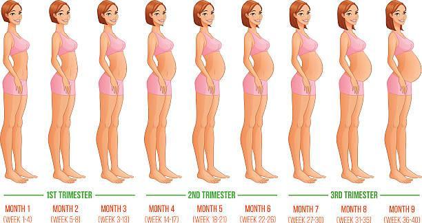 девушка на разных этапах беременности